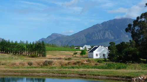 Winelands Day Tour